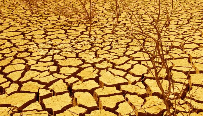 dry-cracked-ground-in-desert-web.jpg