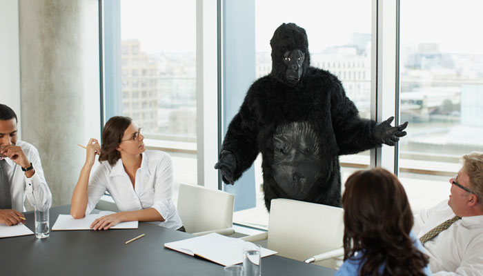 gorilla-conference-room