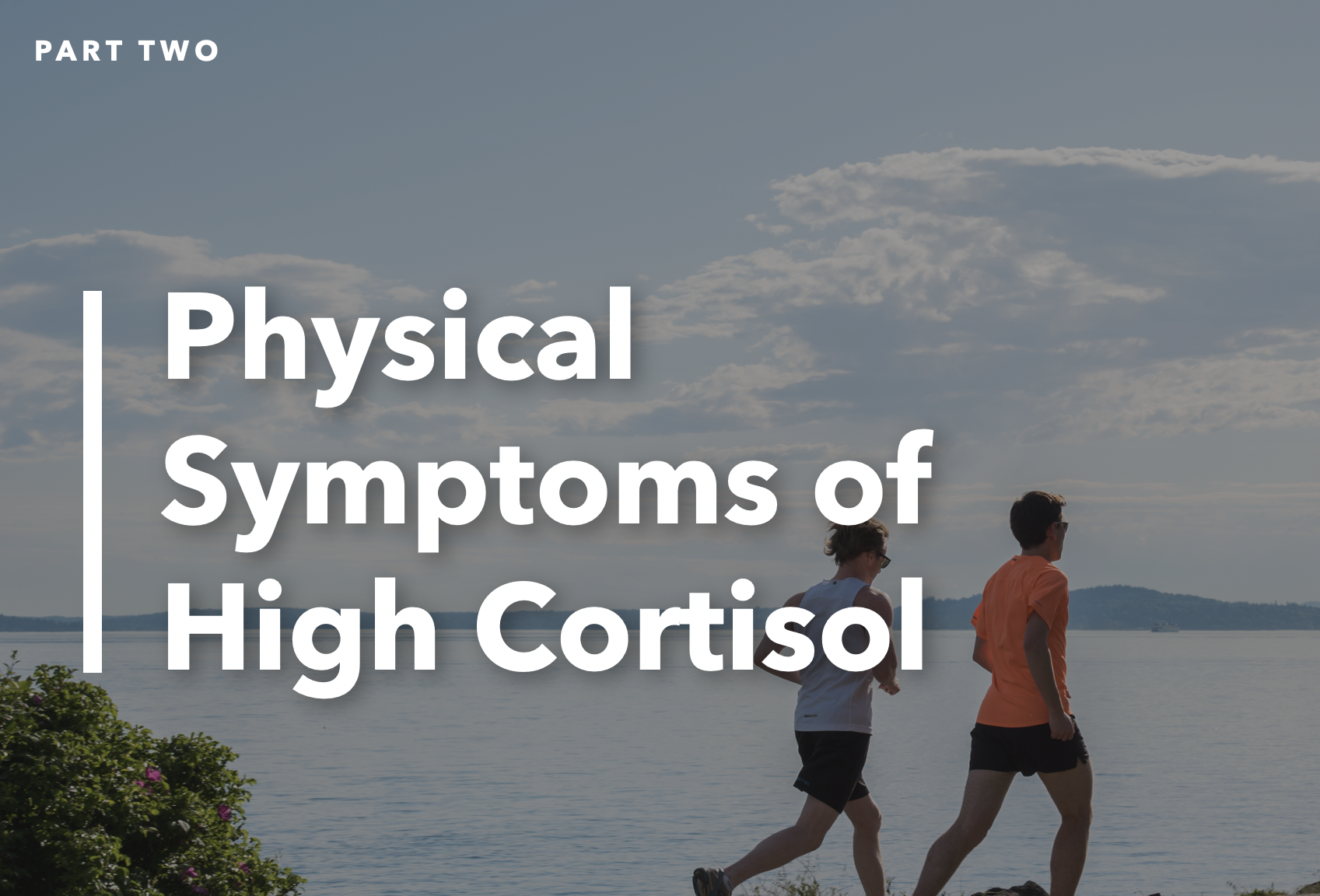 Blog Post High Cortisol